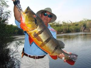 brazil-amazon-peacock-bass-fishing-gallery-21